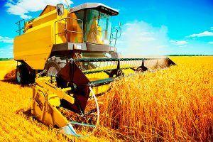 agricoltura moderna