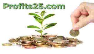 profits25 risparmi