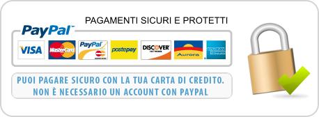 sicurezza pagamento paypal
